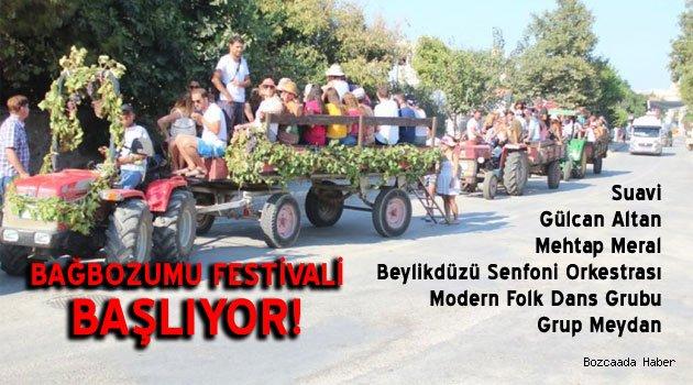 """Adanın en köklü organizasyonu """"Bağbozumu Festivali"""" başlıyor!"""