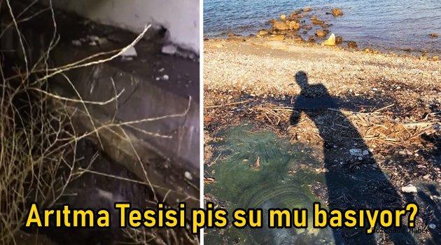 Arıtma Tesisi pis su mu basıyor