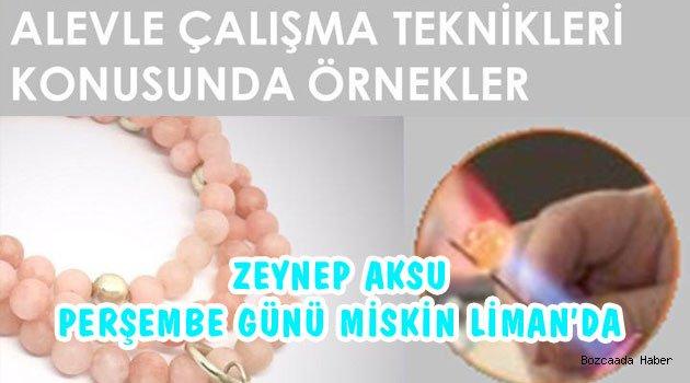 Zeynep Aksu'dan Miskin'de atölye çalışması